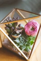 Gold Gem Glass Terrarium