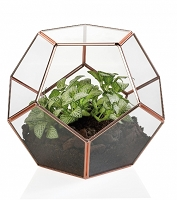 Copper Pentagon  Glass Terrarium