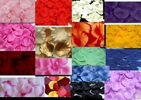 Silk Flower Petals (100pcs/bag)